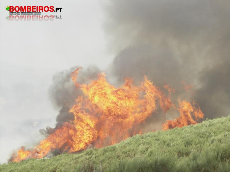 Incêndio Florestal encosta