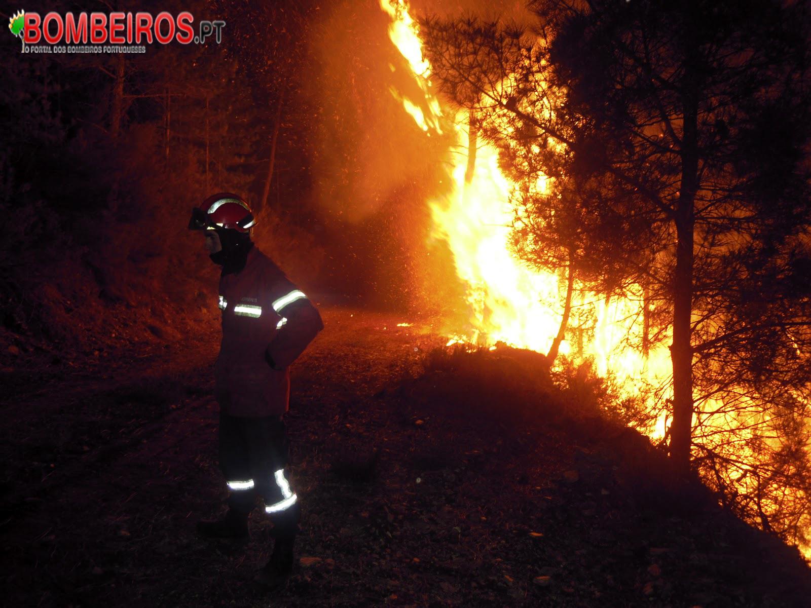 Incêndio Florestal noite