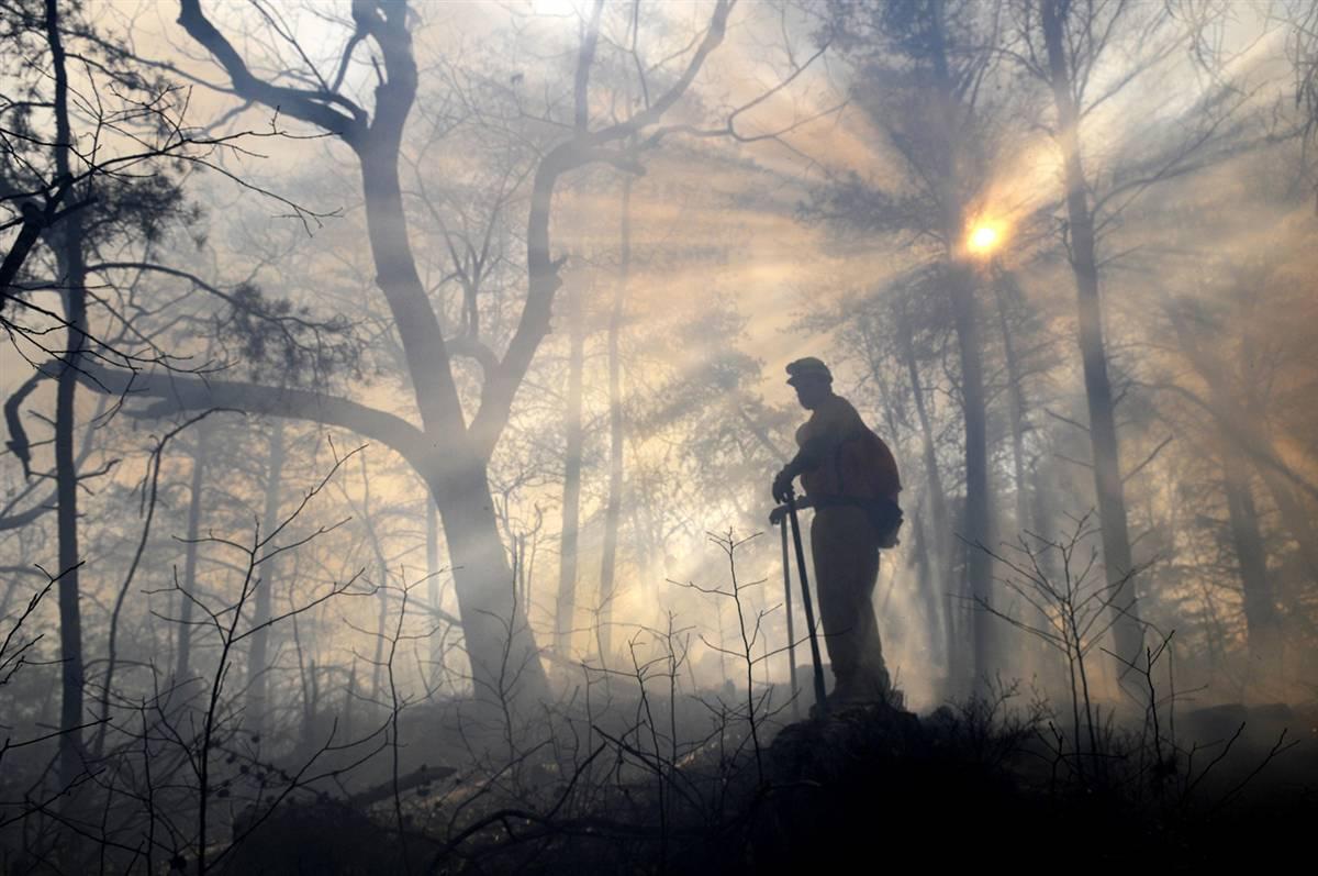 Olhando o rescaldo do incêndio