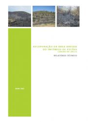 Recuperação da área ardida do incêndio de Picões