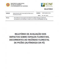 Relatório de avaliação dos impactos sobre espaços florestais, decorrentes do incêndio florestal de Picões (Alfândega da Fé)