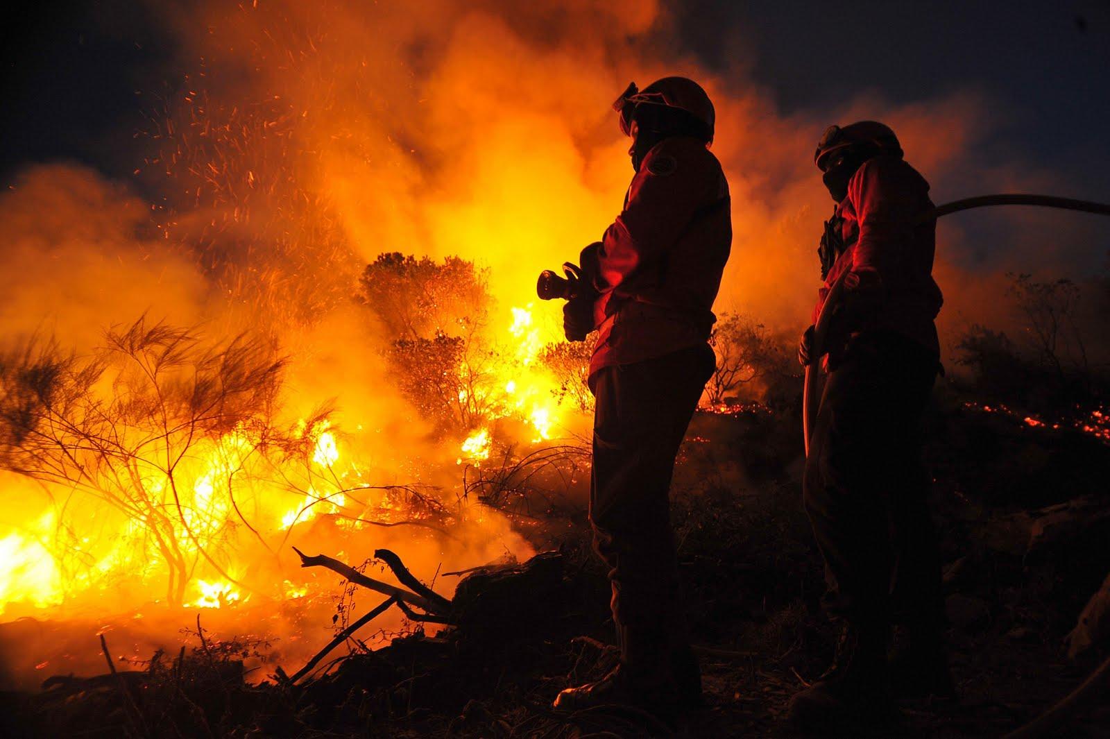 bombeiros.pt