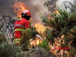 14-2-400x300 bombeiros