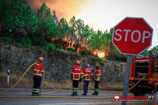 _MG_1563 incêndio florestal stop