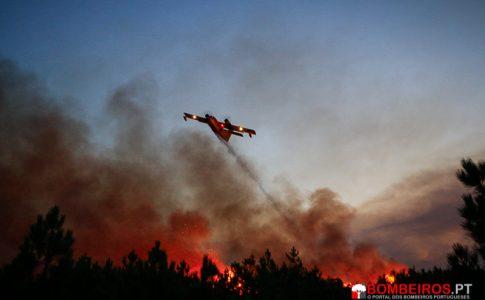 canadair incêndio florestal
