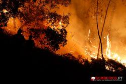 _MG_1758 incêndio florestal noite
