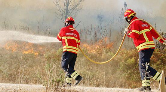Imagem: Nelson Inácio