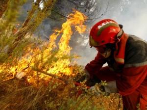 Incêndio Florestal Espanha