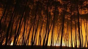 Incendio a Noite