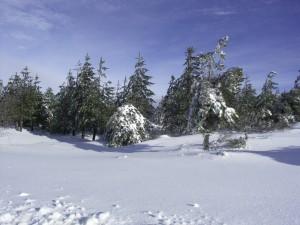 serra da estrela neve
