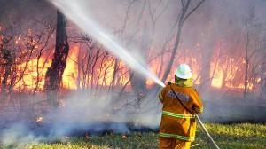 incendio-florestais-australia20130108-0002-size-598