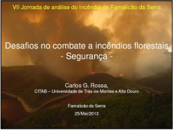 Desafios no combate aos incêndios florestais Seguranca
