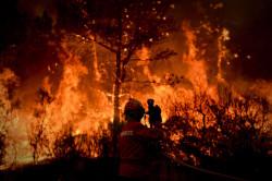 Imagens de: PATRÍCIA DE MELO MOREIRA/AFP
