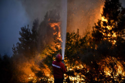 A firefighter tries to extinguish a wildfire in Caramulo, central Por