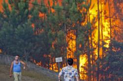 Incêndio na freguesia de Covelo em Gondomar