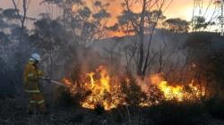 131020072827-02-bush-fire-1020-horizontal-gallery