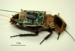 DARPA-HI-MEMS-021