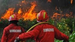 bombeiros1_incendio_d112594d1c8_400x225