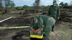 """Incêndios/Guarda: Terrenos por limpar em redor de casas isoladas e de povoações na """"mira"""" da GNR"""