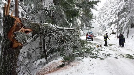 Vento, chuva e neve deixam 15 distritos em alerta