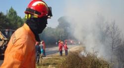 bombeiros cógula