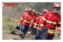 incêndios ferramentas manuais_MG_1311