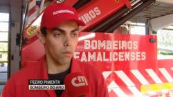 bombeiros mérito pedro pimenta famalicão