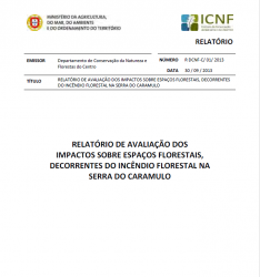 Relatório Serra do Caramulo