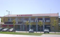 mogadouro