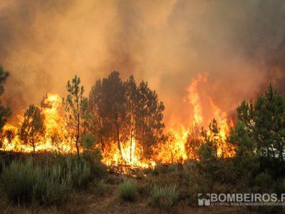 Incêndios | Mais de 10 meios aéreos mobilizados para Santarém e Setúbal (ATUALIZADA)