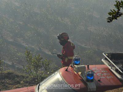 Três estradas cortadas em Nisa e uma em Mangualde — Incêndios