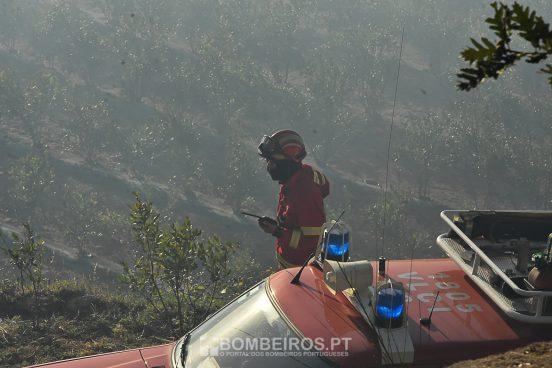 Maioria dos incêndios dominados. Nisa continua em chamas